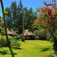 Отель Hibiscus Французская Полинезия, Муреа - отзывы, цены и фото номеров - забронировать отель Hibiscus онлайн фото 7