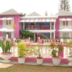 Отель PinkHibiscus Guest House фото 4