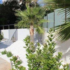 Отель Flamingo Beach Resort Испания, Бенидорм - отзывы, цены и фото номеров - забронировать отель Flamingo Beach Resort онлайн фото 8
