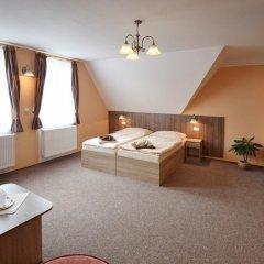 Отель Penzion Eduard Чехия, Франтишкови-Лазне - отзывы, цены и фото номеров - забронировать отель Penzion Eduard онлайн комната для гостей фото 5