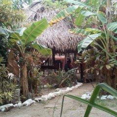 Отель Coco cabañas фото 9