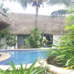 Отель Maya Hotel Residence Мексика, Остров Ольбокс - отзывы, цены и фото номеров - забронировать отель Maya Hotel Residence онлайн фото 4