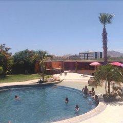 Отель Positano Мексика, Кабо-Сан-Лукас - отзывы, цены и фото номеров - забронировать отель Positano онлайн бассейн фото 2