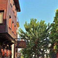 Alp Guesthouse Турция, Стамбул - отзывы, цены и фото номеров - забронировать отель Alp Guesthouse онлайн балкон