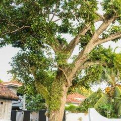 Отель Villa Rosa Blanca - White Rose Шри-Ланка, Галле - отзывы, цены и фото номеров - забронировать отель Villa Rosa Blanca - White Rose онлайн фото 7