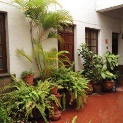 Отель Hostal don Felipe Мексика, Гвадалахара - отзывы, цены и фото номеров - забронировать отель Hostal don Felipe онлайн фото 2