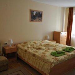 Отель Family Hotel Biju Болгария, Трявна - отзывы, цены и фото номеров - забронировать отель Family Hotel Biju онлайн комната для гостей фото 5