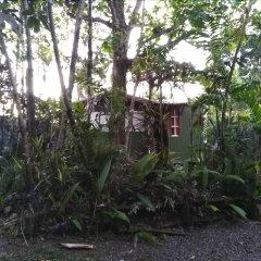 Отель Colonial Lodge Фиджи, Вити-Леву - отзывы, цены и фото номеров - забронировать отель Colonial Lodge онлайн фото 5
