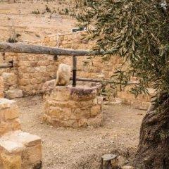 Отель Old Village Resort-Petra Иордания, Вади-Муса - отзывы, цены и фото номеров - забронировать отель Old Village Resort-Petra онлайн фото 3