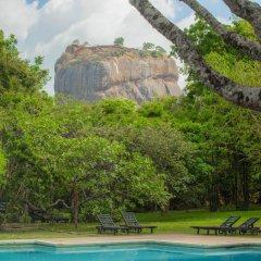 Отель Sigiriya Village бассейн фото 2