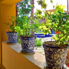 Hotel Los Patios Кабо-Сан-Лукас фото 5