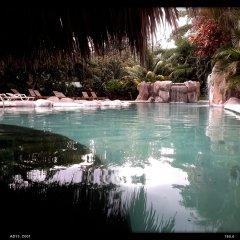 Отель Cañon de la Vieja Lodge Коста-Рика, Sardinal - отзывы, цены и фото номеров - забронировать отель Cañon de la Vieja Lodge онлайн бассейн
