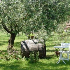 Отель Olive Tree Hill Италия, Дзагароло - отзывы, цены и фото номеров - забронировать отель Olive Tree Hill онлайн фото 6