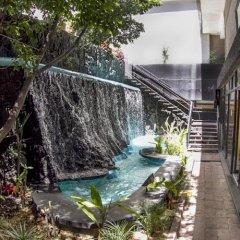 Отель El Diplomatico Hotel Мексика, Мехико - отзывы, цены и фото номеров - забронировать отель El Diplomatico Hotel онлайн бассейн