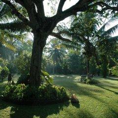Отель Nisala Arana Boutique Hotel Шри-Ланка, Бентота - отзывы, цены и фото номеров - забронировать отель Nisala Arana Boutique Hotel онлайн фото 3