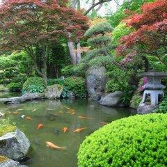 Отель Yumeminoyado Kansyokan Синдзё приотельная территория фото 2