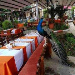 Отель Meatsa Hotel Болгария, Карджали - отзывы, цены и фото номеров - забронировать отель Meatsa Hotel онлайн питание фото 2