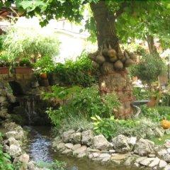 Отель Izvora Болгария, Кранево - отзывы, цены и фото номеров - забронировать отель Izvora онлайн фото 12