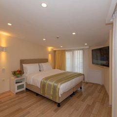 Feri Suites Турция, Стамбул - отзывы, цены и фото номеров - забронировать отель Feri Suites онлайн комната для гостей фото 2
