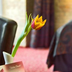 Hotel Sarotti-Höfe гостиничный бар