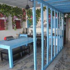 Barba Турция, Урла - отзывы, цены и фото номеров - забронировать отель Barba онлайн фото 3