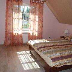 Отель Babrukas Литва, Тракай - отзывы, цены и фото номеров - забронировать отель Babrukas онлайн комната для гостей фото 2