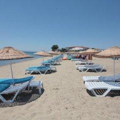 Akkuslar Hotel Турция, Айвалык - отзывы, цены и фото номеров - забронировать отель Akkuslar Hotel онлайн пляж