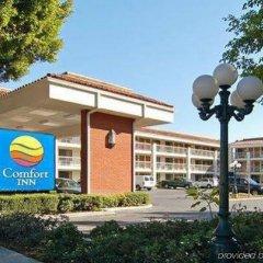 Отель Comfort Inn Near Pasadena Civic Auditorium США, Пасадена - отзывы, цены и фото номеров - забронировать отель Comfort Inn Near Pasadena Civic Auditorium онлайн спортивное сооружение