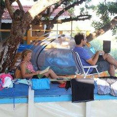 Can Mocamp Турция, Патара - отзывы, цены и фото номеров - забронировать отель Can Mocamp онлайн интерьер отеля