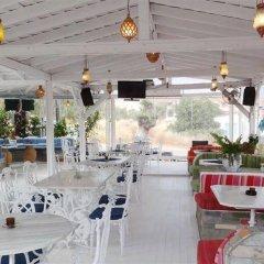 Отель Agistri Греция, Агистри - отзывы, цены и фото номеров - забронировать отель Agistri онлайн питание фото 2