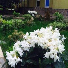 Отель Orhideya Сочи