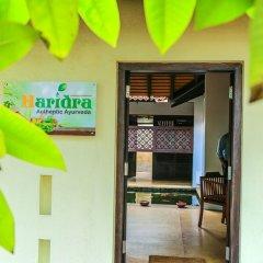 Отель Vendol Resort Шри-Ланка, Ваддува - отзывы, цены и фото номеров - забронировать отель Vendol Resort онлайн детские мероприятия