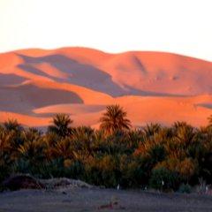 Отель Гостевой дом La Vallée des Dunes Марокко, Мерзуга - отзывы, цены и фото номеров - забронировать отель Гостевой дом La Vallée des Dunes онлайн приотельная территория