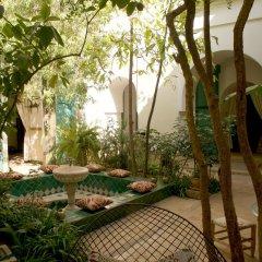 Отель Dar Kleta Марокко, Марракеш - отзывы, цены и фото номеров - забронировать отель Dar Kleta онлайн фото 3