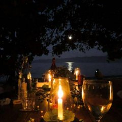 Отель Dolphin Bay Divers Matei Фиджи, Остров Тавеуни - отзывы, цены и фото номеров - забронировать отель Dolphin Bay Divers Matei онлайн