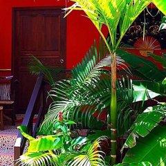 Отель Kantiang Oasis Resort And Spa Ланта