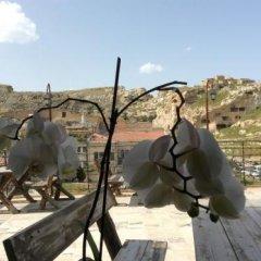 Hotel Cave Konak с домашними животными
