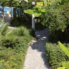 Мини- Lale Park Турция, Сиде - отзывы, цены и фото номеров - забронировать отель Мини-Отель Lale Park онлайн фото 7
