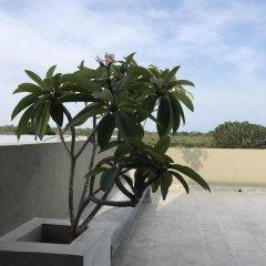 Отель Tree Tops Yala пляж