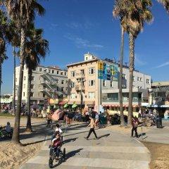 Отель Venice Beach Suites & Hotel США, Лос-Анджелес - отзывы, цены и фото номеров - забронировать отель Venice Beach Suites & Hotel онлайн фото 3