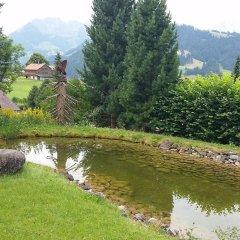 Отель Gstaad - Amazing Lake Chalet фото 2