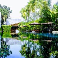 Отель Tea Tree Boutique Resort фото 3