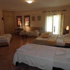 Отель Ammon Garden Hotel Греция, Пефкохори - отзывы, цены и фото номеров - забронировать отель Ammon Garden Hotel онлайн комната для гостей фото 3