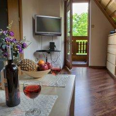 Апартаменты VisitZakopane White River Apartments комната для гостей