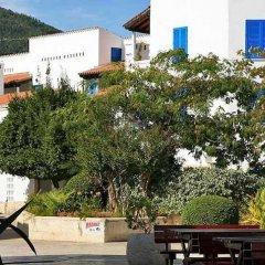 Отель Aleksandar Черногория, Рафаиловичи - отзывы, цены и фото номеров - забронировать отель Aleksandar онлайн фото 3