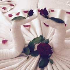 Meryem Ana Hotel Турция, Алтинкум - отзывы, цены и фото номеров - забронировать отель Meryem Ana Hotel онлайн фото 10