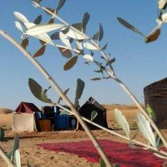 Отель Bivouac Erg Znaigui Марокко, Мерзуга - отзывы, цены и фото номеров - забронировать отель Bivouac Erg Znaigui онлайн детские мероприятия фото 2