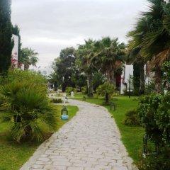 Shalimar Hammamet in Hammamet, Tunisia from 79$, photos, reviews - zenhotels.com photo 2