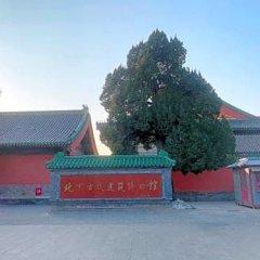 Отель Beijing RJ Brown Hotel Китай, Пекин - отзывы, цены и фото номеров - забронировать отель Beijing RJ Brown Hotel онлайн фото 13
