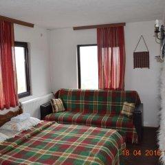 Отель Guest House Alexandrova Болгария, Ардино - отзывы, цены и фото номеров - забронировать отель Guest House Alexandrova онлайн фото 11